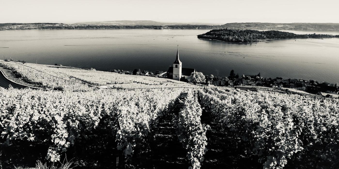 Extension du domaine viticole région des Trois Lacs à Twann, Ligers et le Landeron